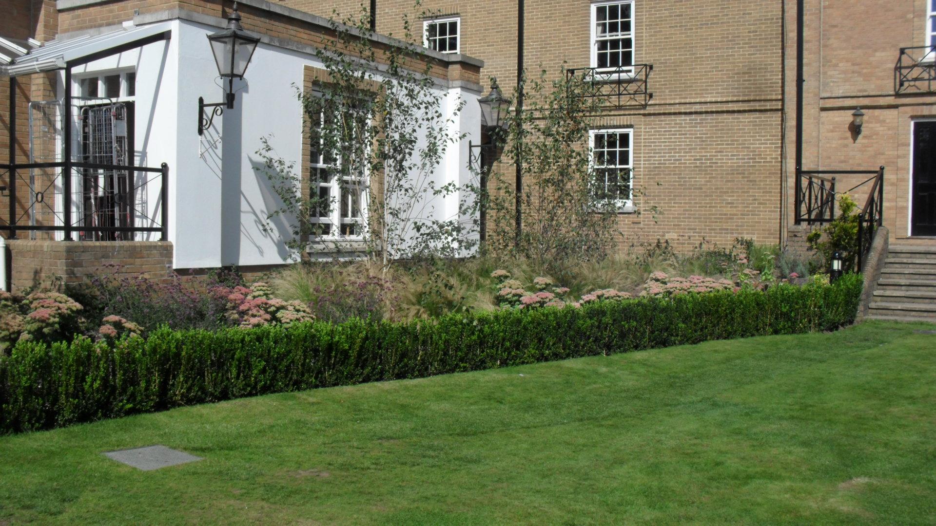 Contract maintenance contract garden maintenance london for Garden maintenance london